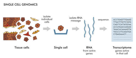 single-cell-genomics